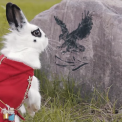 Bunny finds itself on an epic fantasy adventure