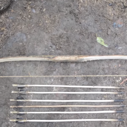 Here's how you can make a bow and set of arrows using natural tools